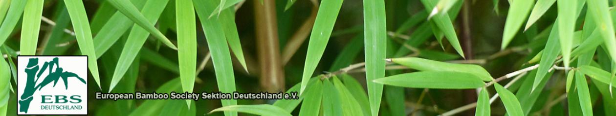 Verbreitung Bambus Deutschlandde